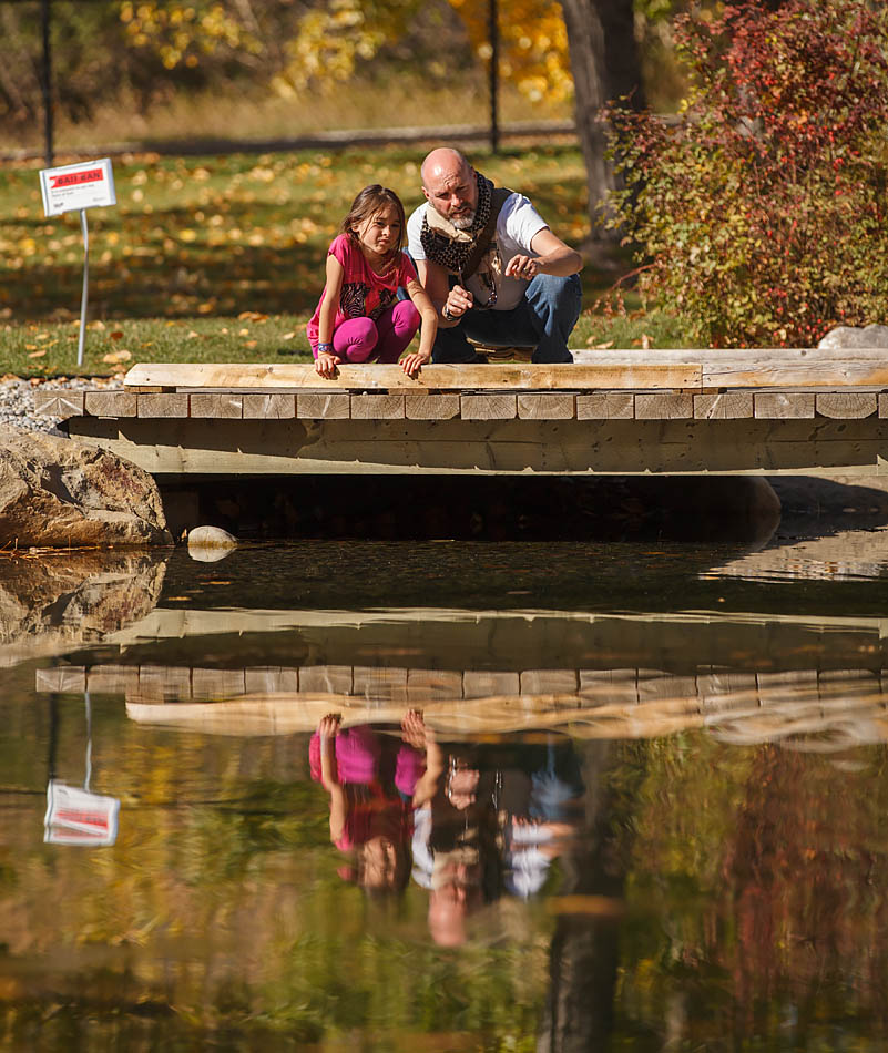 "Daniel Roberts points out a fish in the trout pond to his daughter, Isabella,  during Bow Habitat Station's fifth birthday in Calgary, Alta. on Oct. 4, 2014. ""She didn't want to fish today so we just watched,"" said Roberts, who visits the Station regular with his daughter. (Photo by Amanda Siebert/The Press)"
