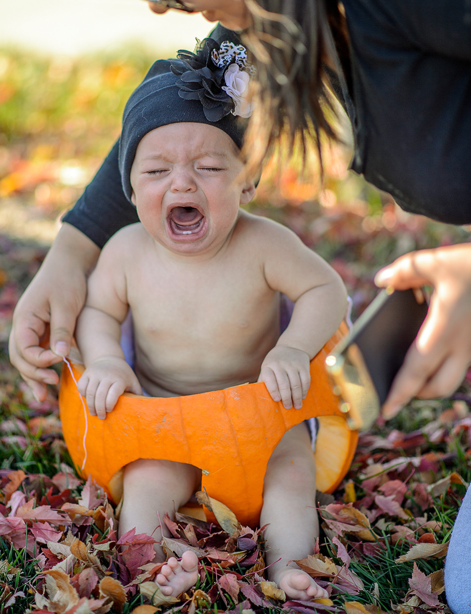 Little Pumpkin: Sara Miller cries while her mother attempts to take a photo of her sitting in a pumpkin in Millcreek Park in Edmonton. Miller's mother had gotten the pumpkin diaper photo idea from an article on Pinterest. (Photo by Andy Maxwell Mawji/The Press)